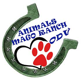 logo Animals Mago Ranch